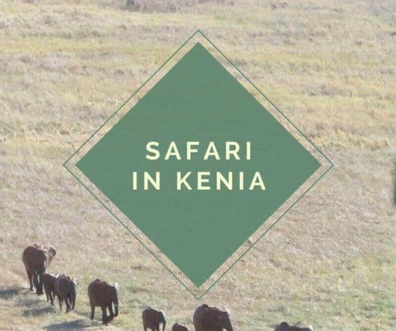 Kenia Safari - Tsavo East Nationalpark.