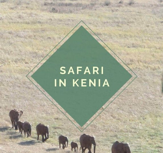 Kenia Safari - Tsavo East Nationalpark.