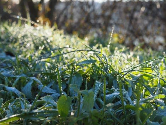 Frostig fängt der Tag an
