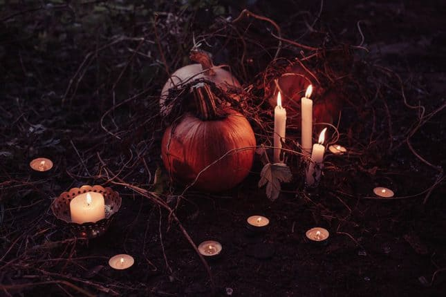 Gruselwald Halloween Kürbis Kerzen